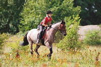 girl riding on Welsh Pony Cob Type