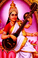Saraswati Hindu Goddess Of Education