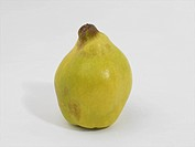 Quince Pear