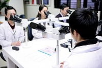 Four laboratory technicians using microscope