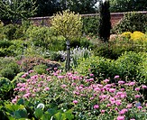 leisure / sports, home and garden, flowering garden in may, plants, flower, flowers, bloom, season, spring, perennial,