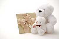 Two fluffy white teddy bears and a greeting card