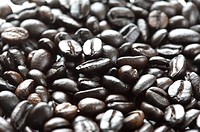 Close_up of coffee beans