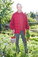 Senior man in backyard garden with carrots and tomatoes, Winnipeg,Canada