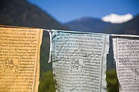 India, Sikkim, Yuksom _ Yuksam, Prayer flags and Kanchenjunga