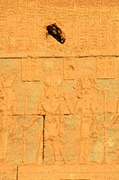 painting, Temple of Umm Ubayd dedicated to Amun, the Great Sand Sea, Western desert, Egypt