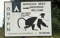 ORTPN signboard, Nyungwe forest, Rwanda