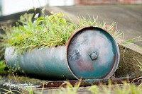 planter created from large pipe