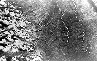 Chemical warfare. Aerial photograph of chlorine gas cylinders lined up in rows in a field. The first row left are discharging gas, blown by the wind. ...