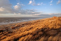 Belgium - Flanders - De Haan - North Sea (thumbnail)