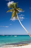 Dominican Republic _ Beach