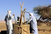 tuareg attingono acqua da un pozzo nel deserto del sahara, tifernine, algeria, africa
