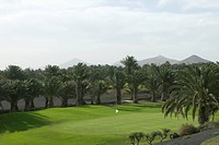 Putting green of golf course surrounded by palm trees