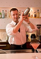 Bartender making cocktails