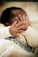 New Born Babies Hands