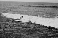 A surfer falling off a surfboard in the sea