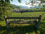 Bench, Austria, Lower Austria, Wachau Region, Weissenkirchen