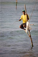 Stilt Fishermen in Koggala, Sri Lanka