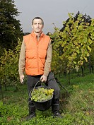 A vintner posing with a bucket of grapes