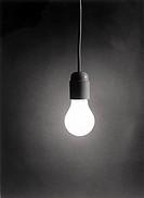 A bulb.