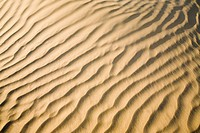 Sand ripples in a desert