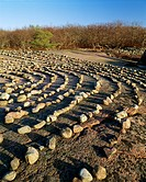 Stones arranged in rows elevated view