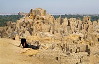 Siwa, Siwa Oasis, Egypt, Man overlooking Fortress of Shali