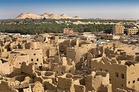 Siwa Town, Siwa Oasis, Egypt, Africa, Shali fortress