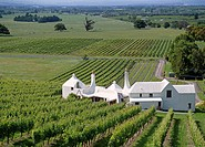 Coleraine vineyard home of winemaker John Buck Te Mata Hawkes Bay New Zealand
