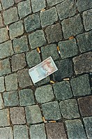A money note on a cobblestone street.