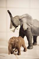 Elephants Sweden.