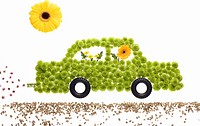 A car made of flowers