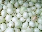 Onions, São Paulo, Brazil