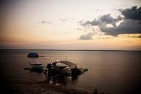 Landscape, Negro River, Amazônia, Manaus, Amazonas, Brazil