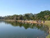 Pond, Ibirapuera Park, São Paulo, Brazil