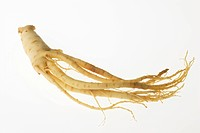 Ginseng root, white background