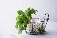 Small Daikon radishes in wire basket