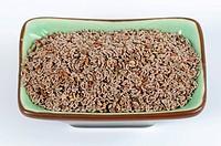 Blond psyllium flea seed in dish