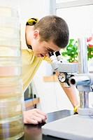 Student looking through a microscope in a laboratory