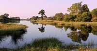 Long Lagoon, Kwando River, Bwabwata, National Park, Susuwe Island Lodge, Caprivi, Namibia, Africa, Travel, Nature