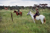 Kenya, Lewa Downs National Reserve, tourist horse riding