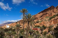 Morocco, Tafraoute region, Ameln valley, Oumesnat village