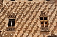 Spain, Castile_Leon, Salamanca, the Casa de las Conchas, library
