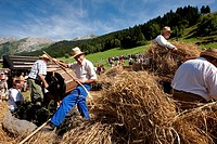 France, Haute Savoie, La Clusaz, Reblochon Festival, shattering an old grain thresher
