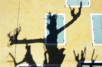 France, Vaucluse, Malaucène, shadows of plane trees