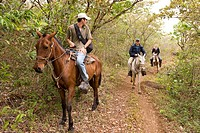 Costa Rica, Guanacaste province, Rincon de la Vieja National Park, horse trek
