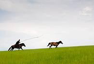 July 2009,Hulunbeir landscape in China´s Inner Mongolia Grassland