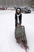 Happy woman dragging a freshly cut Christmas tree at Harvest-your-own tree farm in Ontario Canada