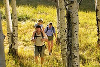 Family hiking in sunny meadow together in aspen forest Utah USA