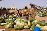Mali, watermelons season